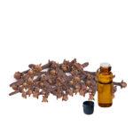 clove-stem-oil